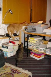 Shervan und Bobby und der Drucker